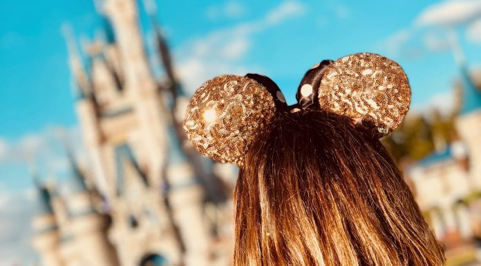 Disney without kids | Central Mass Mom