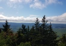 Summer Day Trips | Central Mass Mom