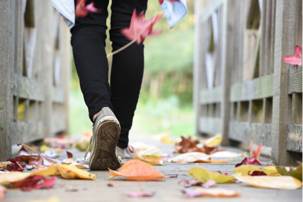 Favorite Things About Fall | Central Mass Mom