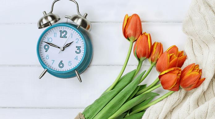 Spring Forward | Central Mass Mom